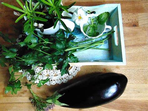 comment cuisiner aubergines comment cuisiner les aubergines anavella