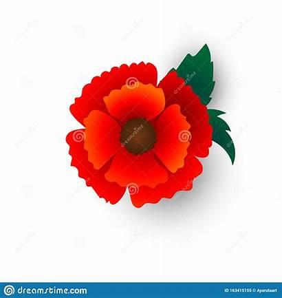 Poppy Remembrance Flower Textile Printing Symbol Floral