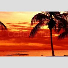 Orange Sonnenuntergang Am Tropischen Insel Mit Palmen