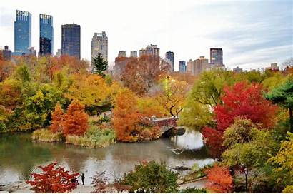 Central Park Nyc Foliage Places York Untapped