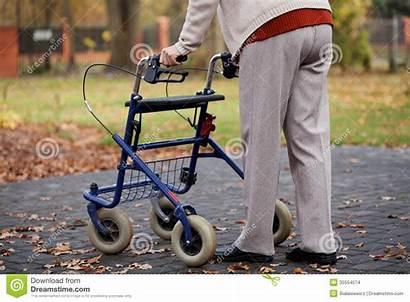 Walker Walking Person Disabled Elder