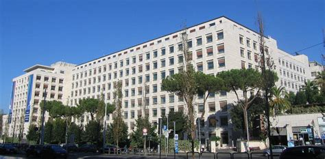 Sede Fao Roma by Allarme Alla Sede Fao Di Roma Unit 224 Cinofile Nel