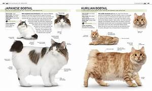 the complete cat breed book dk publishing 2013
