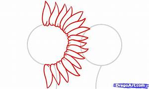 Step 2. How to Draw Sunflowers