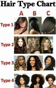 Learn Your Hair Type