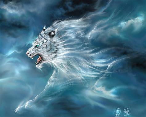 beautiful white tiger wallpaper wallpapersafari