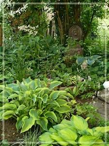 Eberesche Im Garten : unterpflanzung einer eberesche mein sch ner garten forum ~ Yasmunasinghe.com Haus und Dekorationen