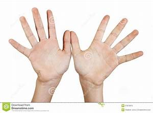 Two Open Hands. Royalty Free Stock Photo - Image: 21810815