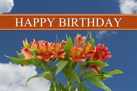 happy birthday cupcake stock image image  celebrate