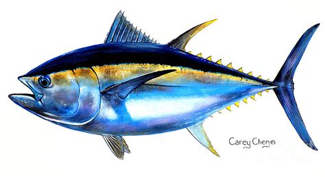 and yellow curtains big eye tuna painting by carey chen