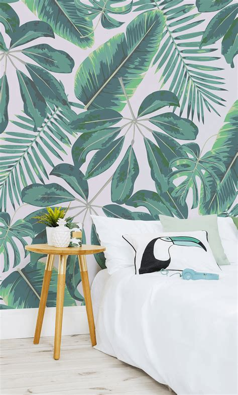 stay  trend   tropical wallpapers murals