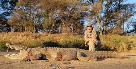 Crocodile Hunting Africa