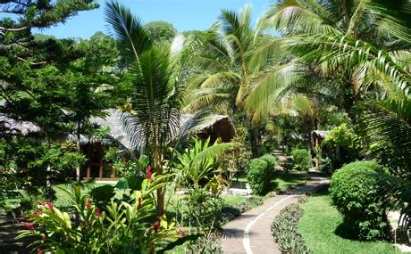 recherche d emploi en cuisine jardin tropical iniaina com magazine 100 vie pratique