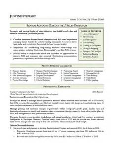 resume sles for govt sales account executive resume exle