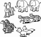 Coloring Jungle Animal Pages sketch template