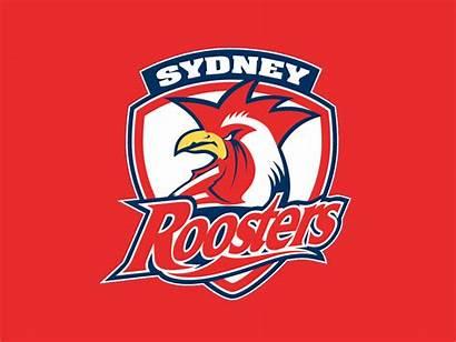 Roosters Nrl Sydney Background Chook Pen Fanpop