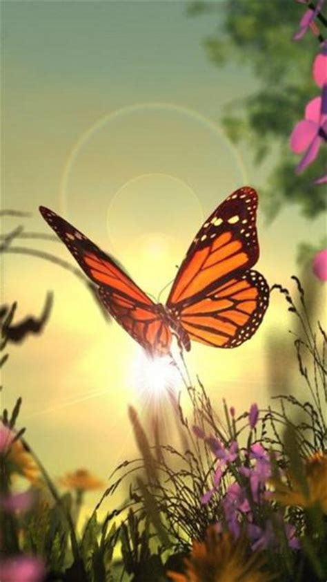 Animated Butterfly Wallpaper For Mobile Phone - butterfly mobile wallpaper