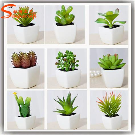 Combination Of Potted Succulent Plant Wholesale Artificial