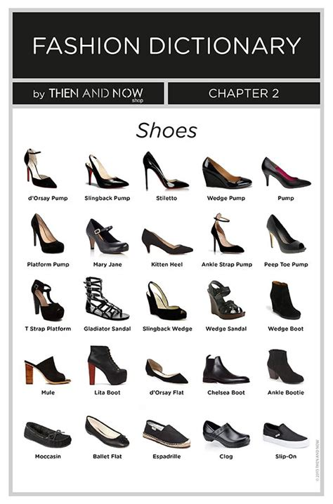 types  shoes infographics fashion dictionary