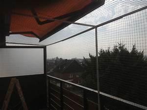 vernetzung an einem balkon mit sonnenschutz katzennetz profi With markise balkon mit drei d tapeten