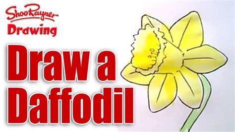 draw daffodils youtube