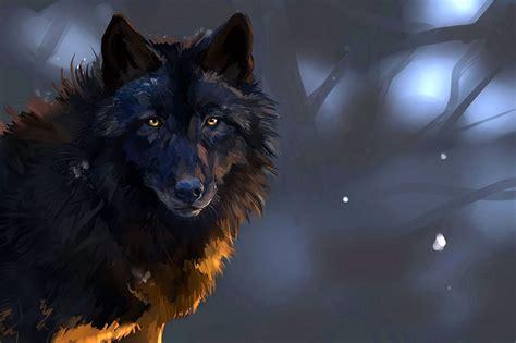 wolf hd wallpapers  desktop wolf wallpaperspro