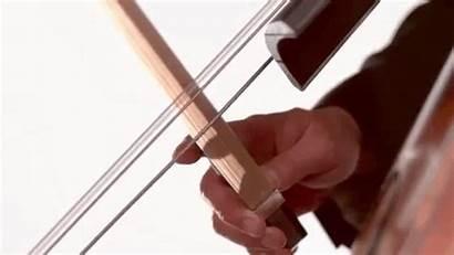 Slow Motion Bass Double Super Instruments Captured