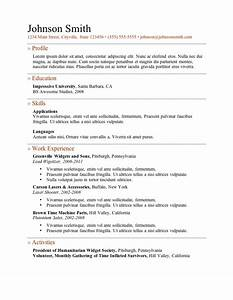 Experience On A Resume Template Resume Builder