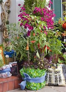 Pflanzen Für Balkonkästen Sonnig : pflanzen f r garten mit wenig sonne kreative ideen f r innendekoration und wohndesign ~ Bigdaddyawards.com Haus und Dekorationen