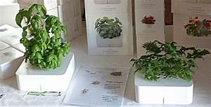 Mini Potager D Intérieur : les potagers d int rieurs jardinage int le blog ~ Dailycaller-alerts.com Idées de Décoration