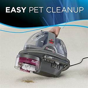 Best Enzymatic Cleaner For Dog Urine To Have A Clean Home