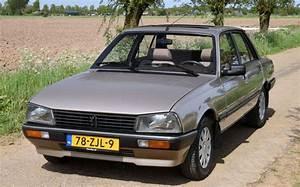Peugeot 505 Gr - 1986