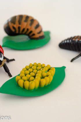 science archives preschool inspirations 651 | Ladybug Facts Preschool Inspirations 4 280x424