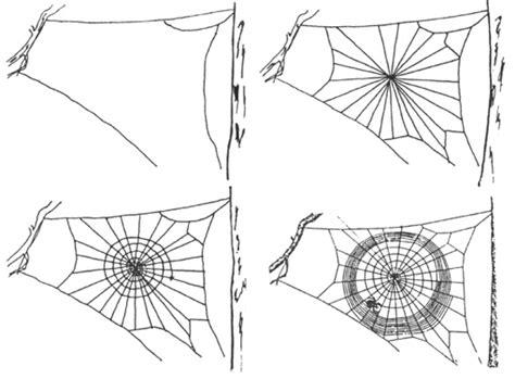 les araign 233 es