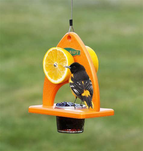 bird feeders  baltimore orioles birdcage design ideas