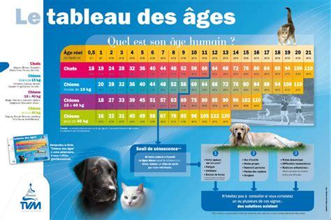 poppy le plus vieux chat au monde est d 233 c 233 d 233 224 l 226 ge de