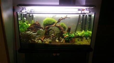 quel neon choisir pour aquarium quel 233 clairage choisir pour un bac de 150 litres
