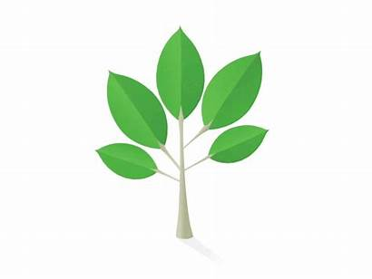 Growing Tree Animation Svg Trees Plant Planting