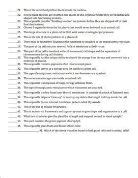cell organelles matching worksheet by brown science tpt