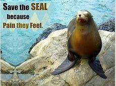 Endangered Animals Slogans | auto-kfz info