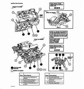 2001 Ford Mustang 3 8 V6 Firing Order