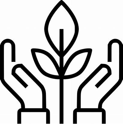 Conservation Icon Svg Plant Onlinewebfonts