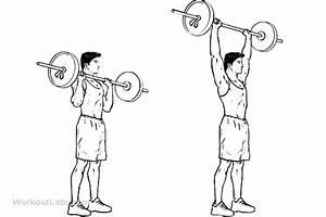 Shoulders/Abs Standing Overhead Military Barbell Shoulder ...