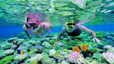 reef chalets perhentian islands perhentian snorkeling tour packages