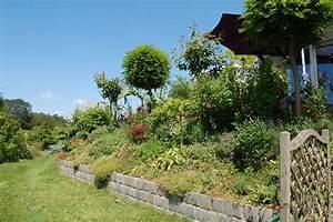 Erde Für Rasen : pflegeleichte g rten statt steinw ste oder rasen ~ Lizthompson.info Haus und Dekorationen
