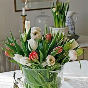 Tulpen Im Topf In Der Wohnung : tulpen nat rliche sch nheit mit frohsinn gepaart ~ Buech-reservation.com Haus und Dekorationen