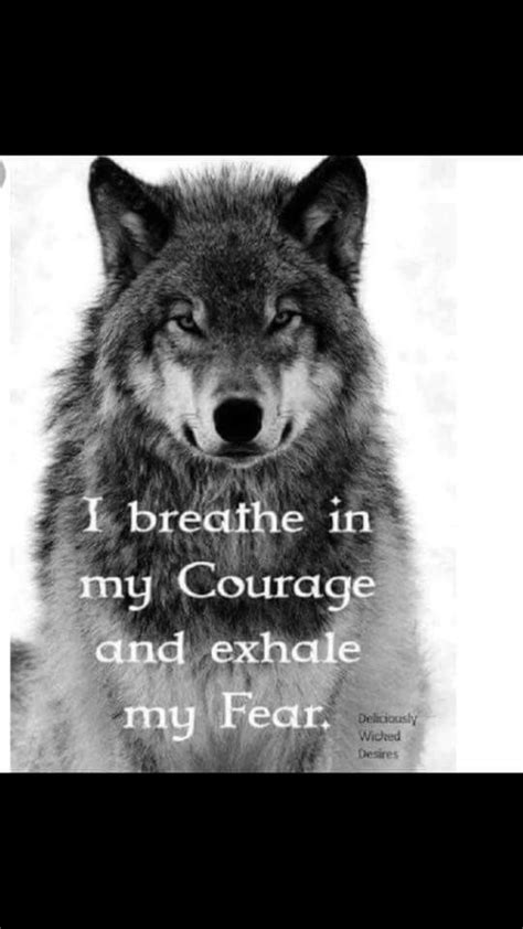 idea  jimmie carroll  wolf wolf quotes wolf pack