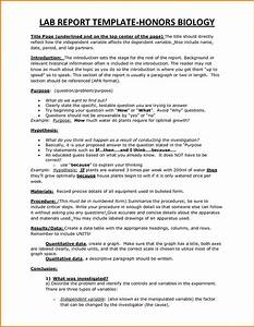 creative writing vs blogging primary homework help ww2 weapons essay help others