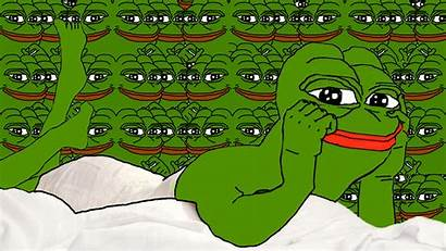 Pepe Frog Meme Pc Background 1080p Frogs