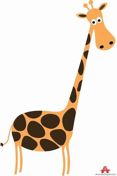 Giraffe Clipart Clip Neck Tall Head Animals
